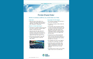 Reduced image of the Florida Shared Solar factsheet
