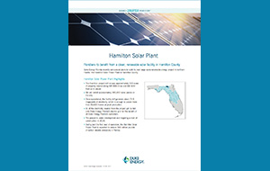 Reduced image of the Hamilton Shared Solar factsheet