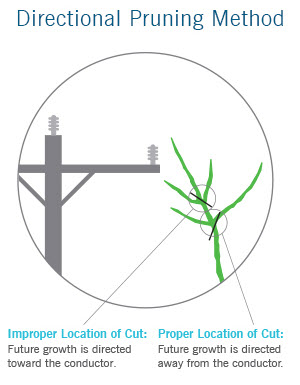 Illustration of directional pruning method